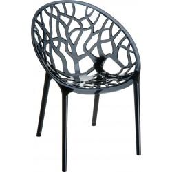 Siesta Crystal Sandalye Siyah Transparan
